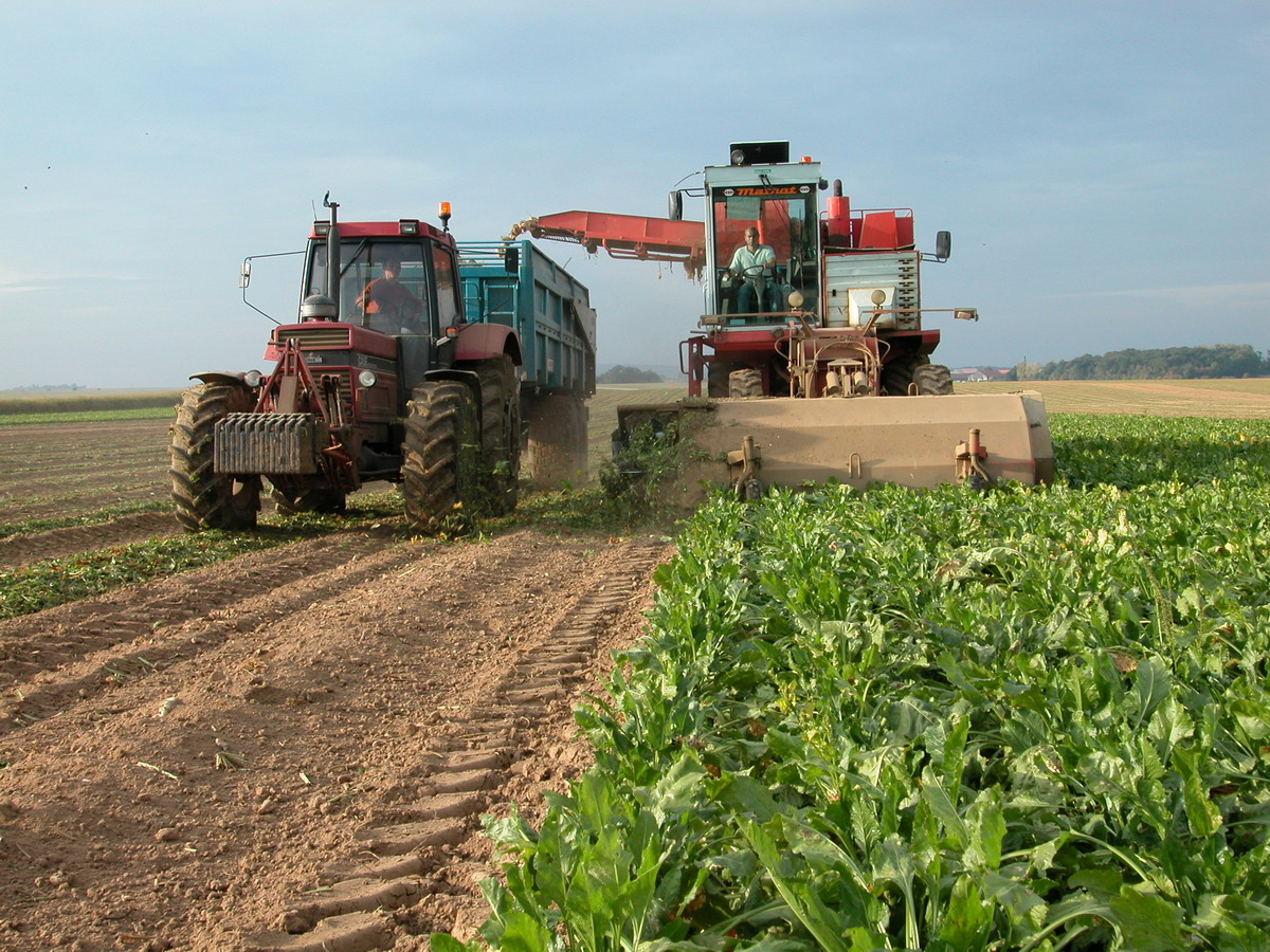 france is the first european agricultural power agrodaily