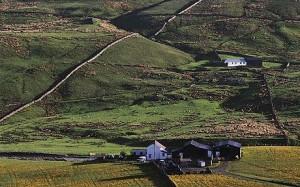 hill-farm-460_1209007c
