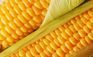 corn2112