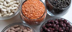 beans_lg