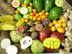 fruits_brazil