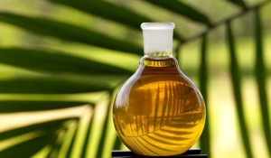 palm-oil1710