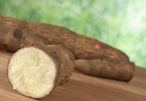 Tapioca-Cassava-Root311