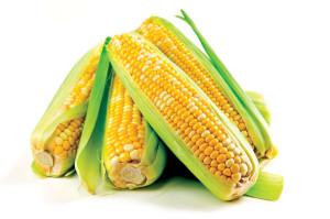 corn912