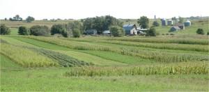 farm202