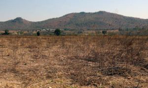 Underutilised-land-at-Kondozi-farm