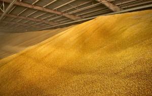 corn_storage