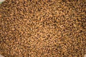 grain-texture