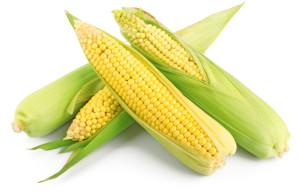 corn1611