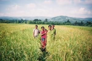 India-Agriculture