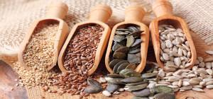 oil-seeds