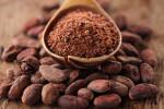 cocoa310