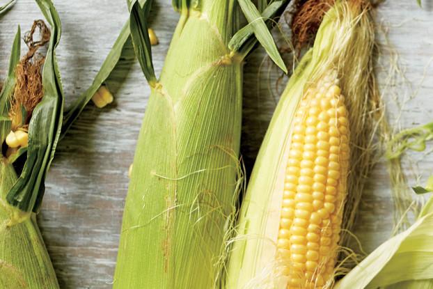 corn2610