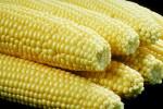 corn3110