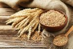 wheat0210