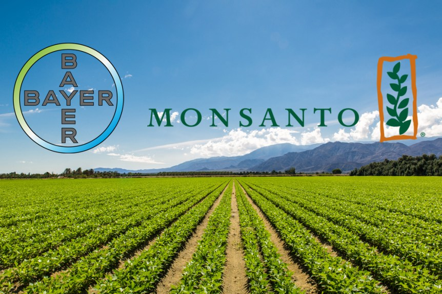 monsanto company a question on agricultural