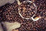 coffee1312