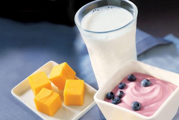 dairy1001