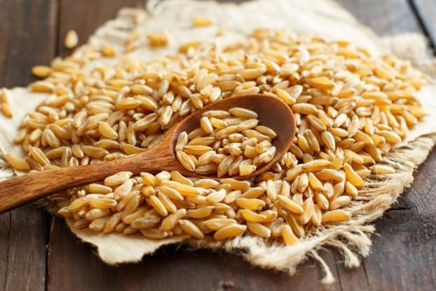 grain1601