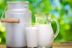 milk3101