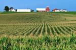 farmland202